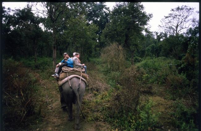 VIAJES DE AVENTURA A LA INDIA DESDE BUENOS AIRES - Agra / Delhi /  - Buteler en India
