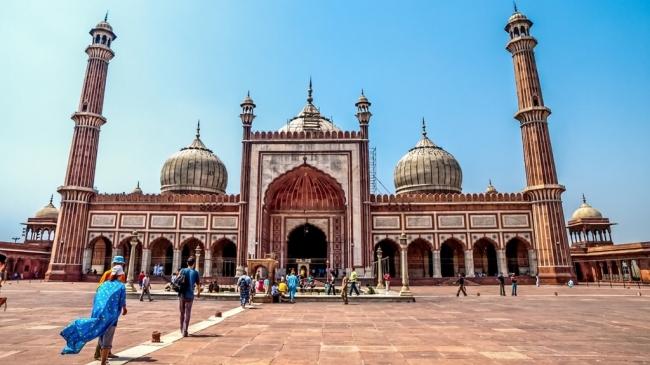 VIAJE GRUPAL A LA INDIA, MALDIVAS, SRI LANKA Y DUBAI - Buteler en India