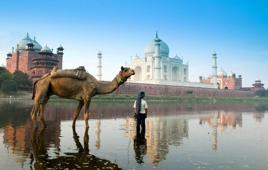 Requisitos para Viajar a la India desde Argentina -  /  - Buteler en India